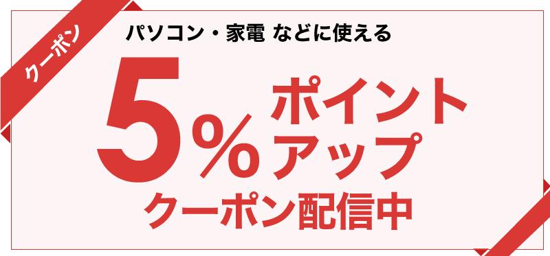 ビックカメラ.com「いい買物の日 5%ポイントアップクーポン」