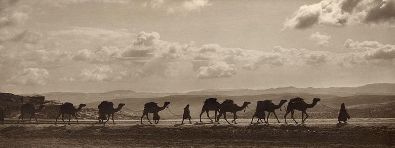 Silk-Road_camel_transport