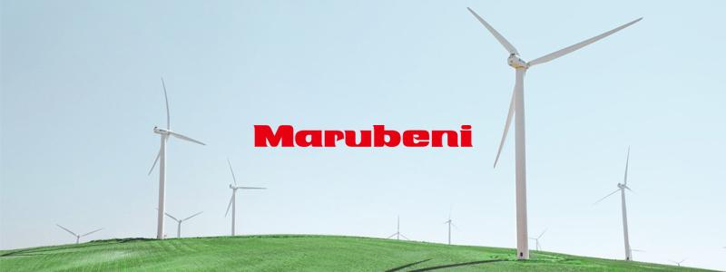 大手総合商社「丸紅」 ブロックチェーン活用の法人を対象とした再生可能エネルギー売買プラットフォーム開発に投資