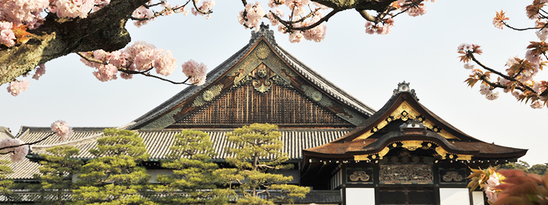 京都の対象店舗でApple Payを使うと「二条城の一日城主」になれるキャンペーン実施中