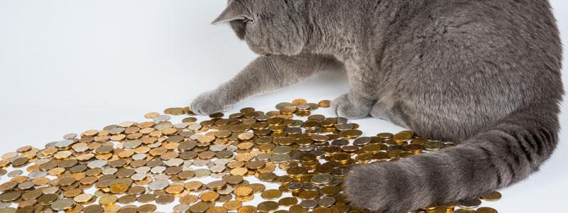 仮想通貨取引所の収益の今後は?これからも高収益なのか?