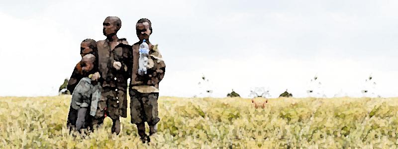 UNICEFフランスがステーブルコインDAIで基金受付