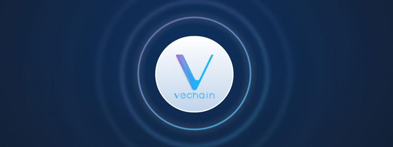 ヴィチェーン(VeChain/VET)がPwC、ウォルマートと提携し食品追跡システム開発